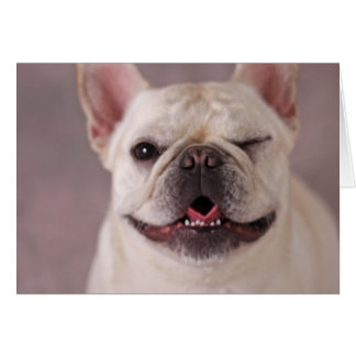 Perro de guiño divertido dogo francés tarjeta de felicitación