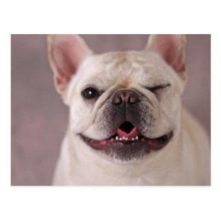 Perro de guiño divertido dogo francés tarjeta postal