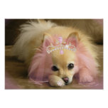 perro de hadas de la princesa con la corona del di poster