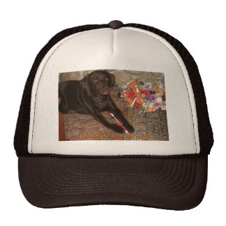 Perro de Halloween con el gorra del gusto por lo d