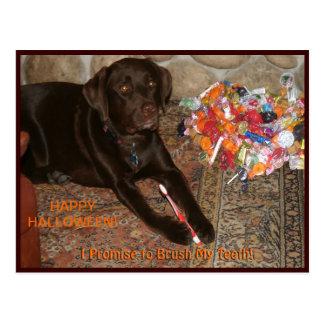 Perro de Halloween con el gusto por lo dulce Tarjetas Postales