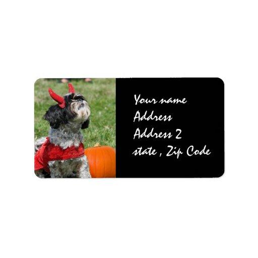 Perro de Halloween Shih Tzu Etiquetas De Dirección