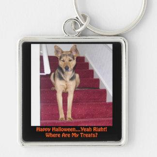 Perro de Halloween y ningunas invitaciones Llavero Cuadrado Plateado