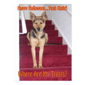 Perro de Halloween y ningunas invitaciones Tarjeta Postal
