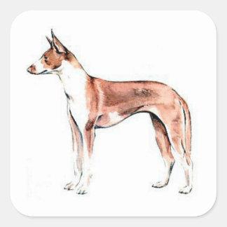 Perro de Ibizan Pegatina Cuadradas Personalizada