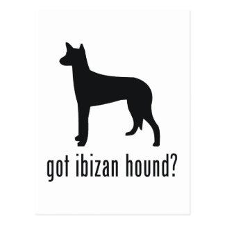 Perro de Ibizan Postales