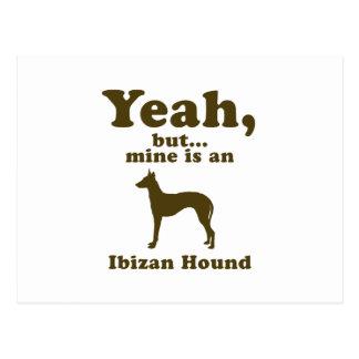 Perro de Ibizan Tarjetas Postales