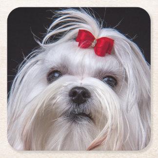 Perro de juguete blanco maltés del práctico de posavasos de cartón cuadrado