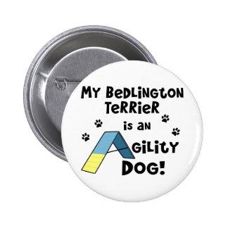 Perro de la agilidad de Bedlington Terrier Pins