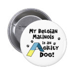 Perro de la agilidad de Malinois del belga Pins