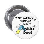 Perro de la agilidad de Norfolk Terrier Pins