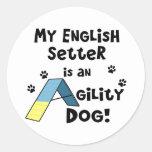 Perro de la agilidad del organismo inglés etiquetas