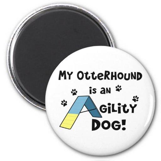 Perro de la agilidad del Otterhound Imán Para Frigorifico