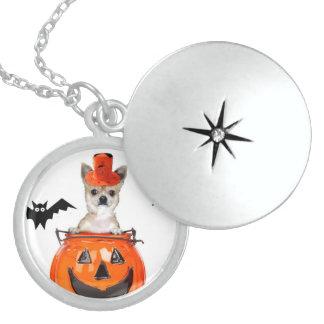 Perro de la chihuahua de Halloween Medallones