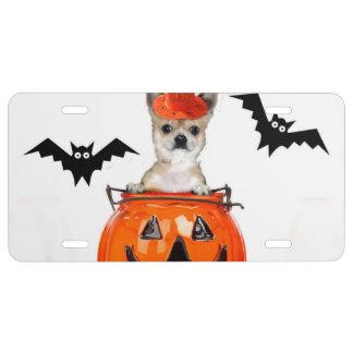 Perro de la chihuahua de Halloween Placa De Matrícula