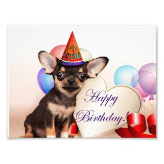 Perro de la chihuahua del cumpleaños fotografías