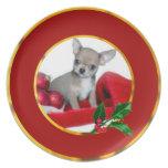 Perro de la chihuahua del navidad platos de comidas
