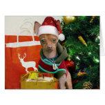 Perro de la chihuahua del navidad tarjeta de felicitación grande