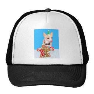perro de la chihuahua que come al hombre de pan de gorras de camionero