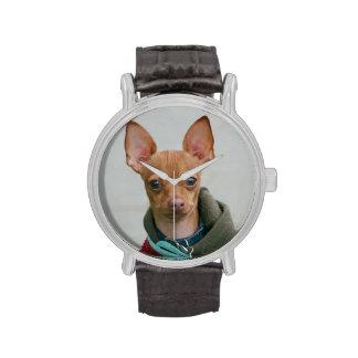 Perro de la chihuahua relojes de pulsera