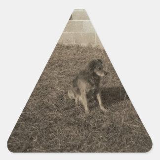 Perro de la familia pegatina triangular