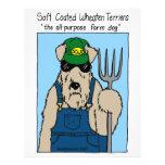 Perro de la granja de SCWT Tarjetas Informativas