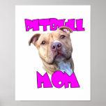 Perro de la mamá de Pitbull Poster