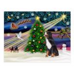 Perro de la montaña de la Magia-Bernese de Navidad Postales