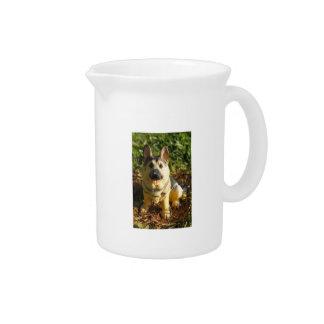 Perro de la porcelana jarra de beber
