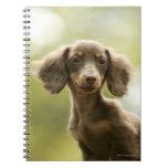 Perro de la salchicha de Frankfurt (marrón) Libretas