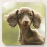 Perro de la salchicha de Frankfurt (marrón) Posavaso