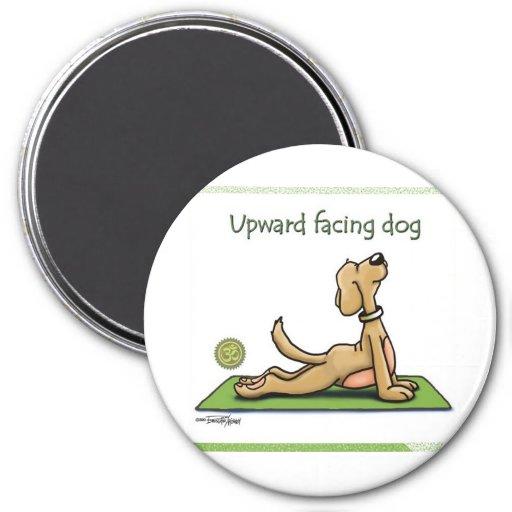Perro de la yoga - actitud ascendente del perro de imanes para frigoríficos