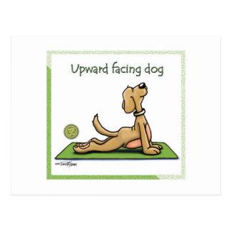 Perro de la yoga - actitud ascendente del perro tarjetas postales