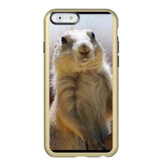 Perro de las praderas con los dientes de dólar funda para iPhone 6 plus incipio feather shine