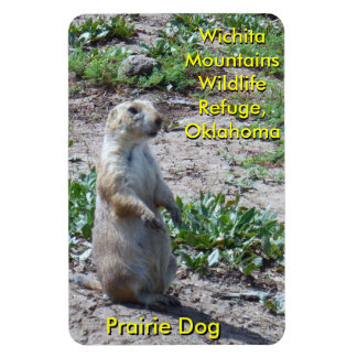 Perro de las praderas de la reserva de las imanes de vinilo