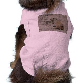 perro de las praderas del bebé playera sin mangas para perro