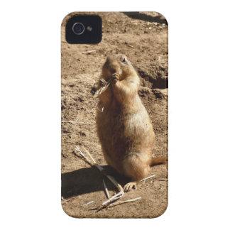 Perro de las praderas iPhone 4 Case-Mate cobertura