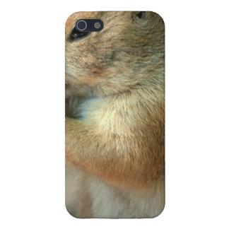 Perro de las praderas iPhone 5 cobertura