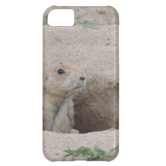 Perro de las praderas funda para iPhone 5C