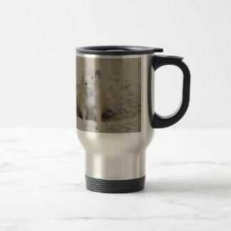 Perro de las praderas tazas de café