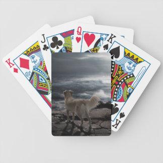 Perro de mar baraja de cartas