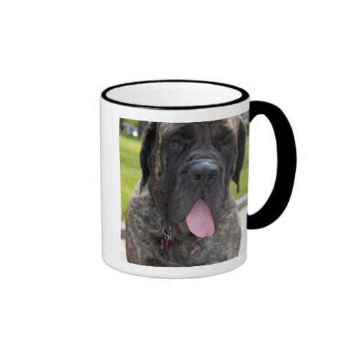 Perro de Mastif del inglés en Bryon, Ohio. 2 Taza