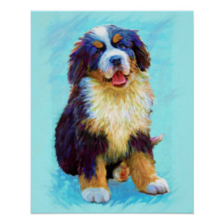 perro de montaña bernese póster