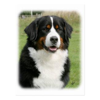 Perro de montaña de Bernese 9Y236D-106 Postal