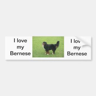 Perro de montaña de Bernese Pegatina Para Auto