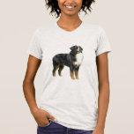 Perro de montaña de Bernese - colocándose Camiseta