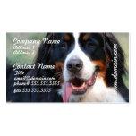 Perro de montaña de Bernese con la tarjeta de Tarjetas Personales