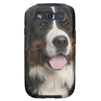 Perro de montaña de Bernese (de 1 año) Galaxy S3 Fundas