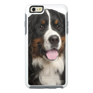 Perro de montaña de Bernese (de 1 año) Funda Otterbox Para iPhone 6/6s Plus
