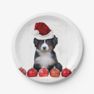 Perro de montaña de Bernese del navidad Platos De Papel